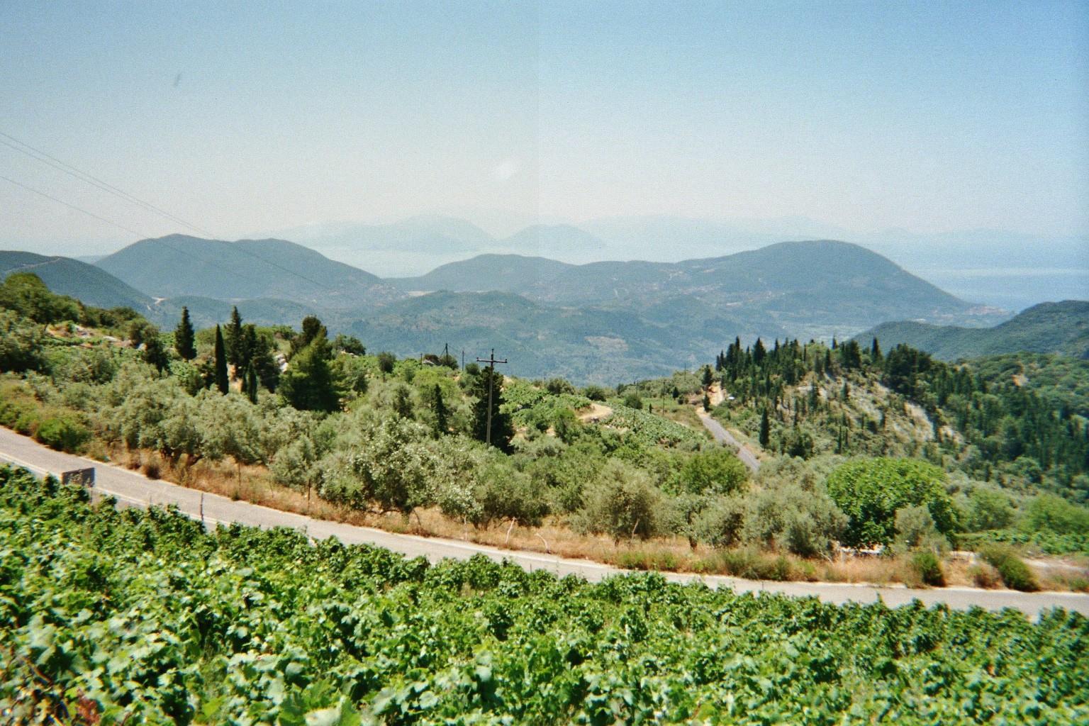 Vergezicht vanuit de bergen, met druiven