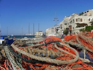 De oude stad van Tel Aviv, vissers waren net binnen!