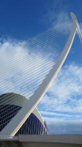 Brug van Calatrava 7