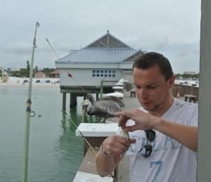 Beet@Pier 60 Clearwater (Twee loerende Pelicanen)