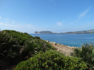 Prachtige natuur en marineleven bij Porto Conte