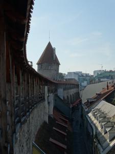 Lopen over de stadsmuur van Tallinn