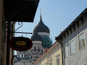 Met zicht op Alexander Nevski Kathedraal