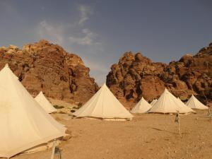 Luxe tenten in The Rock Camp-Petra