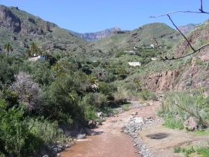 Het binnenland met stromende riviertjes