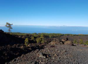 Het diverse landschap van Tenerife
