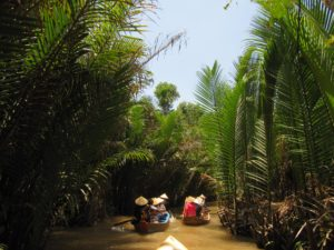 de Mekong Delta