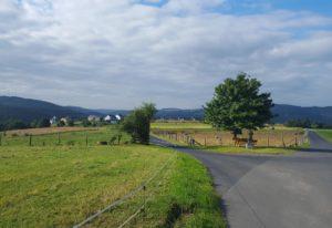 De nabije omgeving van de Camping