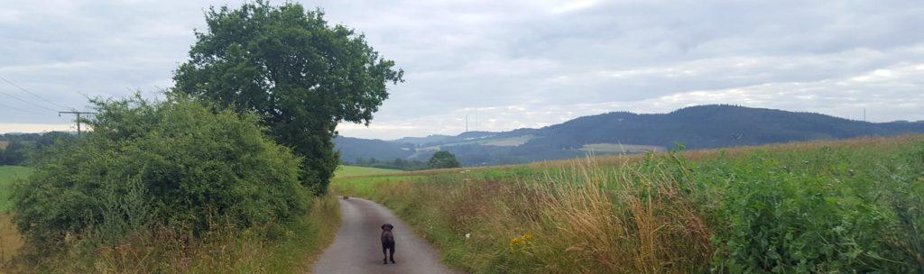Panorama van de omgeving in Luxemburg